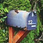 mailbox in tree